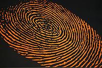 Magnum Investigations - NJ Private Investigator